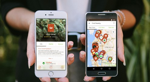 The Leafly app detail different strains and contains dispensary maps (Source: Privateer Holdings)