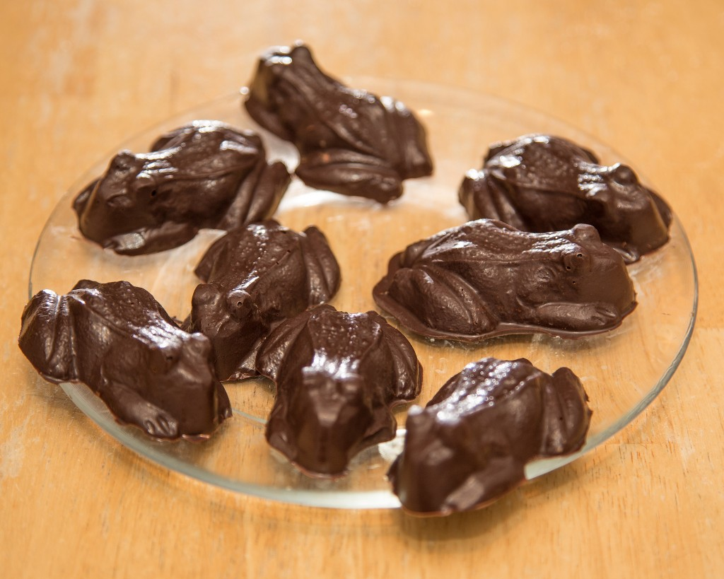 Chocolate Frogs (Source: Flickr - Robert Couse-Baker)