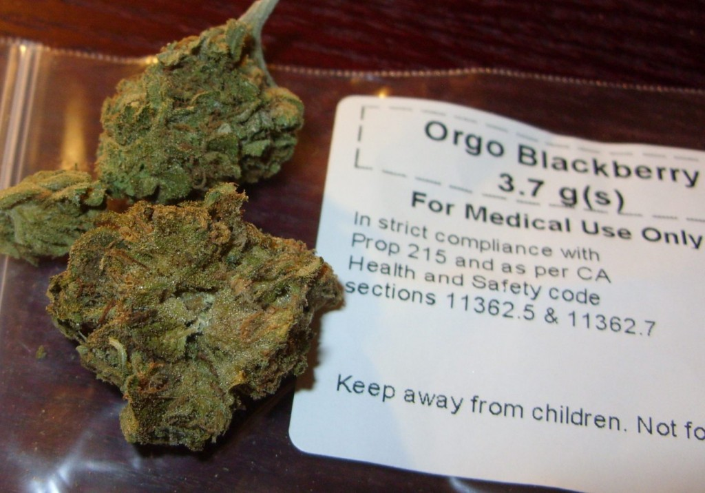 Regulation of medical cannabis varies hugely between states (Wikimedia Commons)