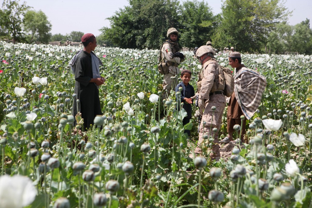 U.S. Marine greets locals in a poppy field, Helmand Province, Afghanistan. (Wikimedia Commons)