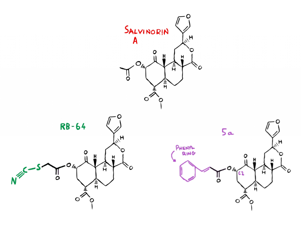 These analogues of Salvinorin A are currently being investigated as potential non-addictive painkillers. (Source: thepsychedelicscientist.com)