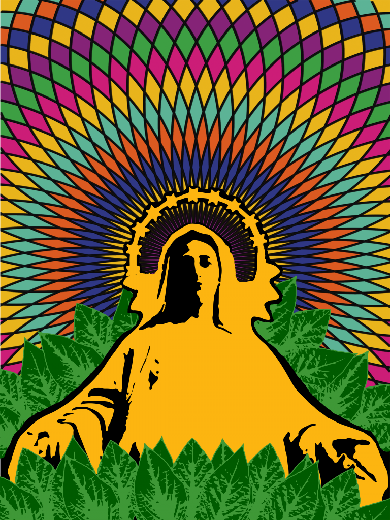 Salvia divinorum was a psychedelic used in religious ceremonies with a Christian influence. (Source: thepsychedelicscientist.com)