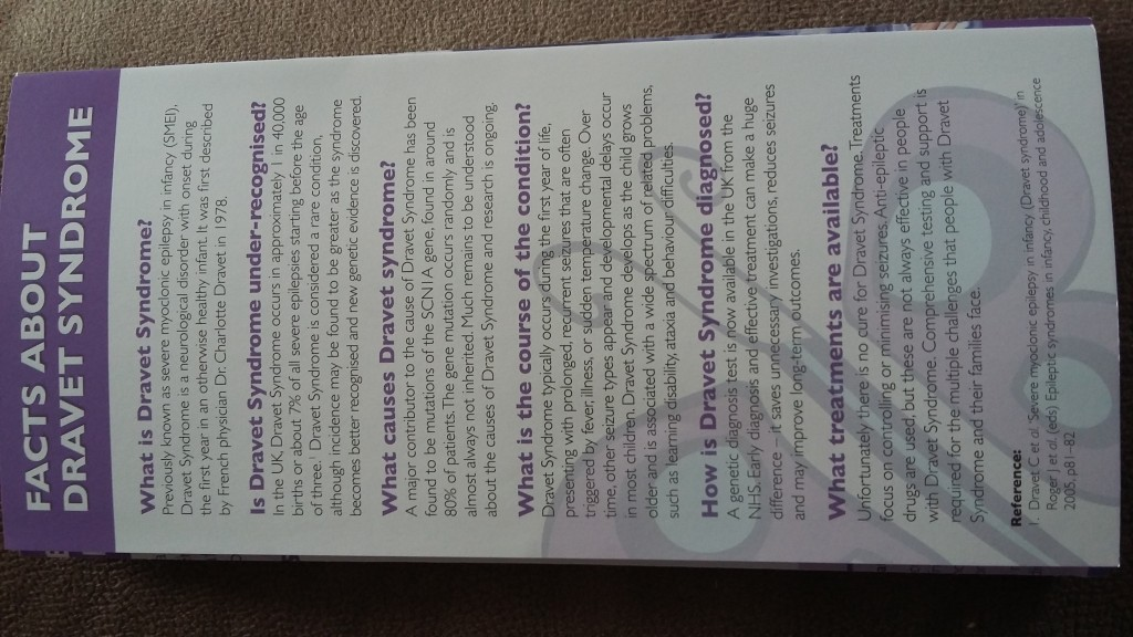 Leaflet for Dravet Syndrome. (Source: Danielle Davis)